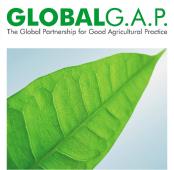 Logotype Global G.A.P. Mano Verde